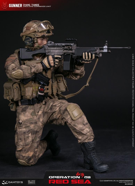 1//6 DAM DAMTOYS DMS007 Operation Red Sea Gunner Vest Plate Carrier Set